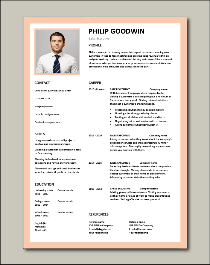 Free Sales Executive CV template 1
