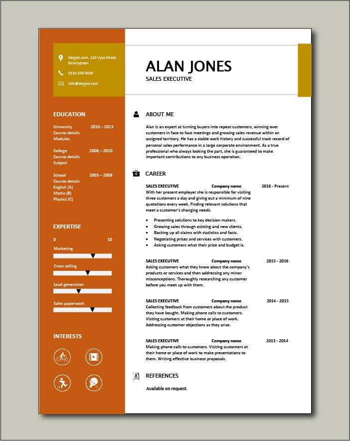 Free Sales Executive CV template 2