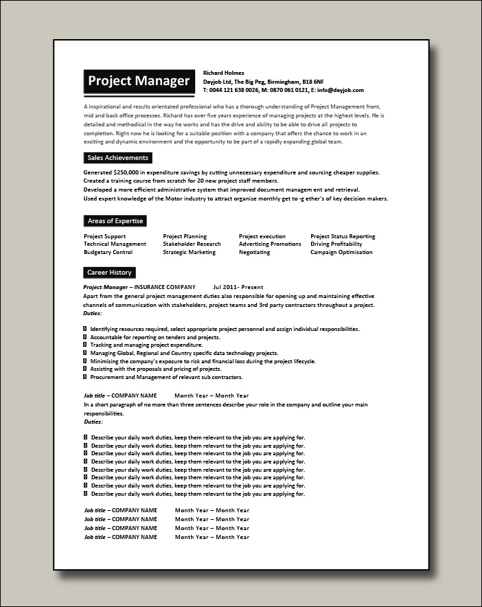 Project Manager CV 7 - 2 pages