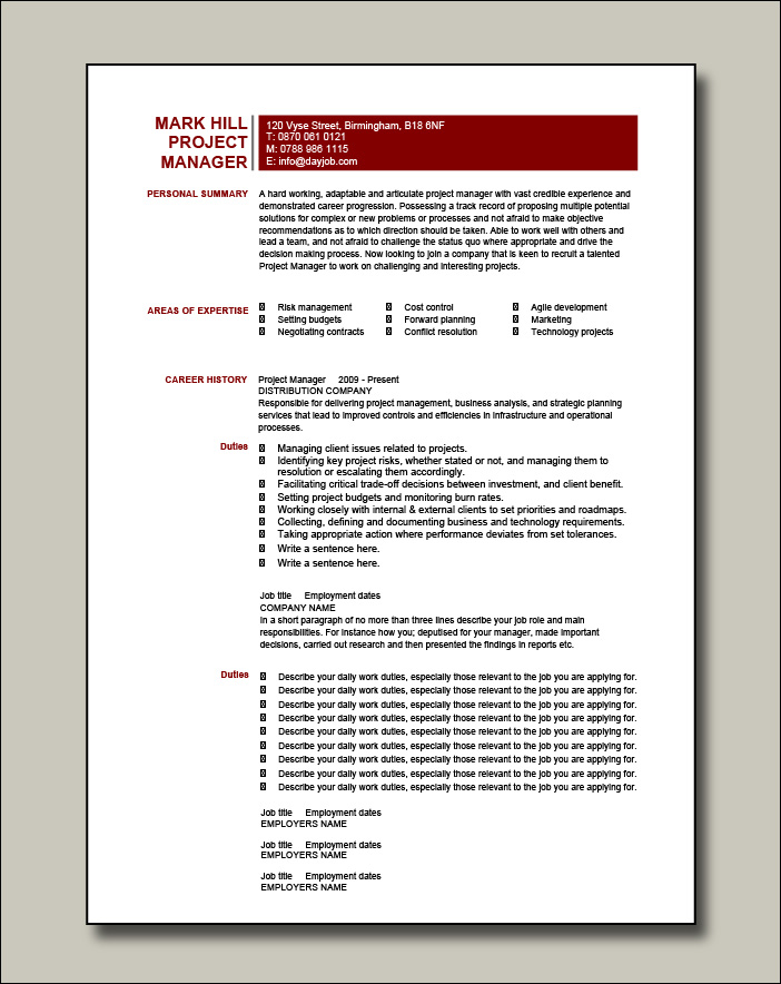 Project Manager CV example 5 - 2 pages