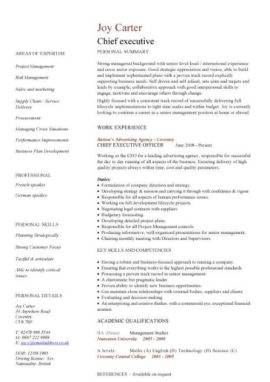 chief executive CV template