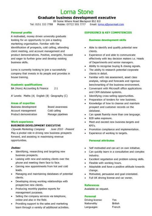 graduate business development executive cv sample  student resume  career history  graduates  cvs