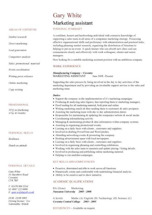example cv marketing assistant