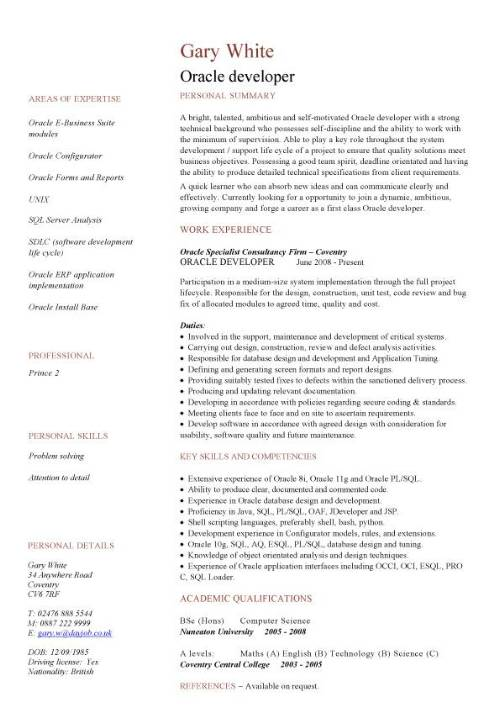 oracle developer cv sample  cv writing  how to write a