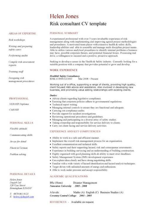 risk consultant cv template