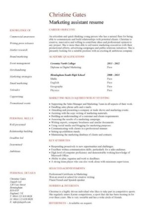 Entry Level Resume Templates Cv Jobs Sample Examples