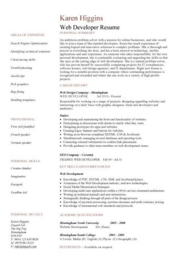 web developer resume  example  cv  designer  template