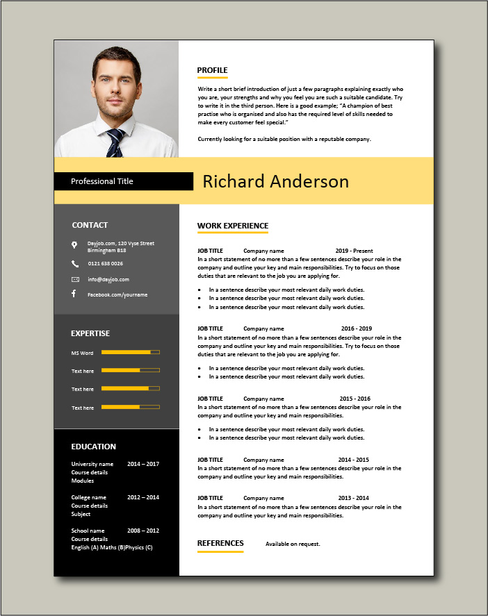 Premium CV template 2 - 1 page version
