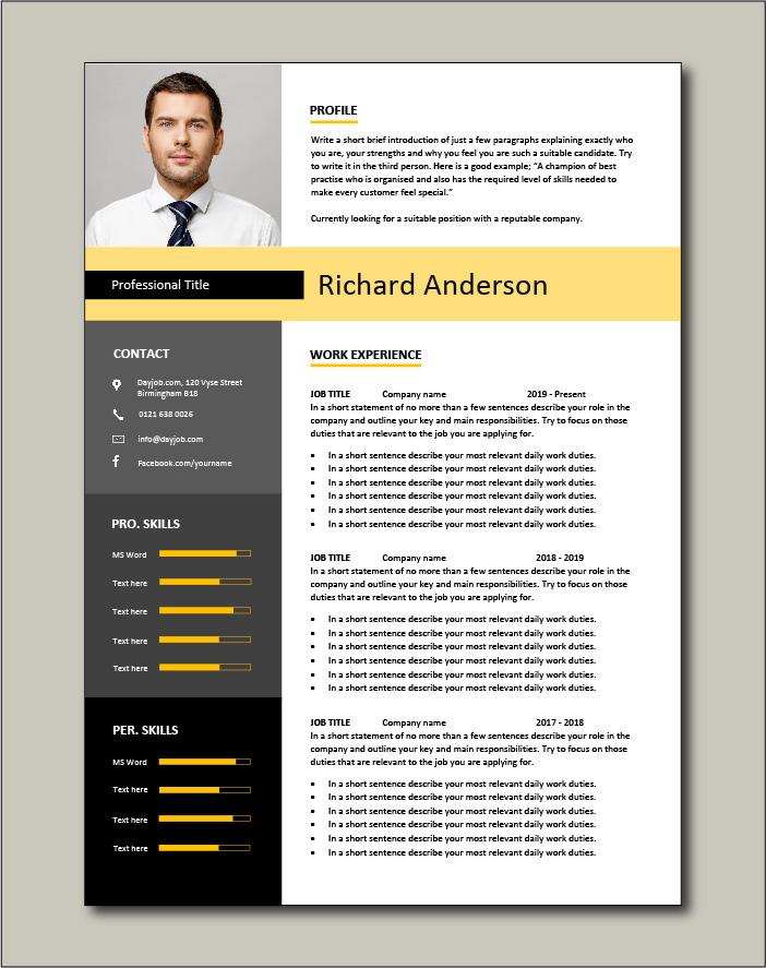 Premium CV template 2 - 2 page version