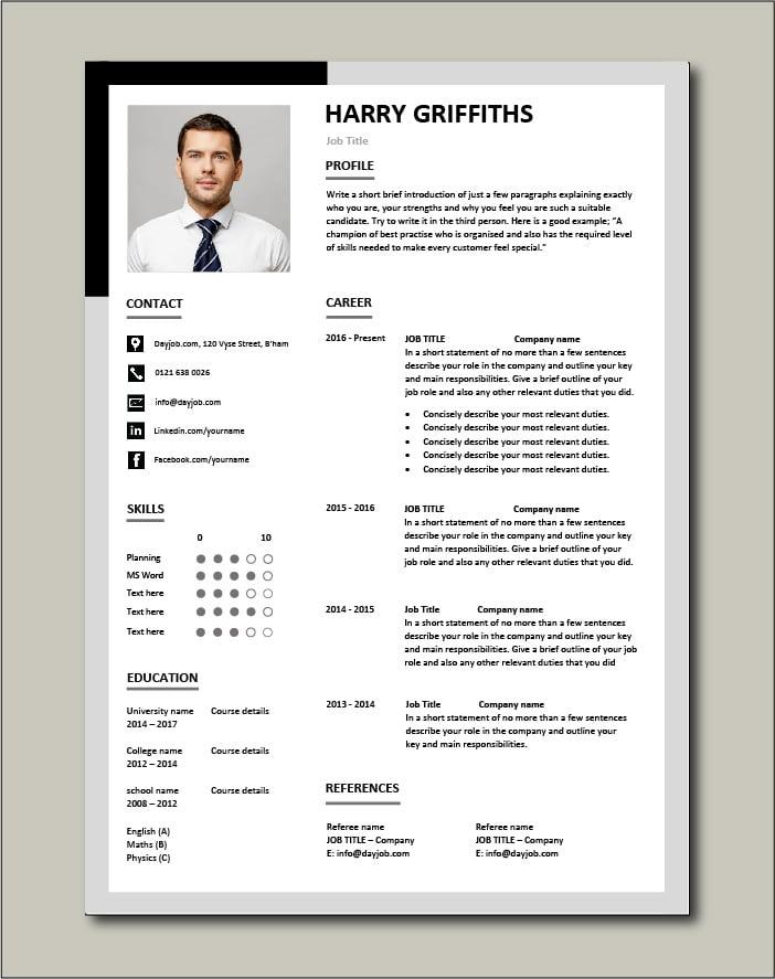 Premium CV template 31 - 1 page version