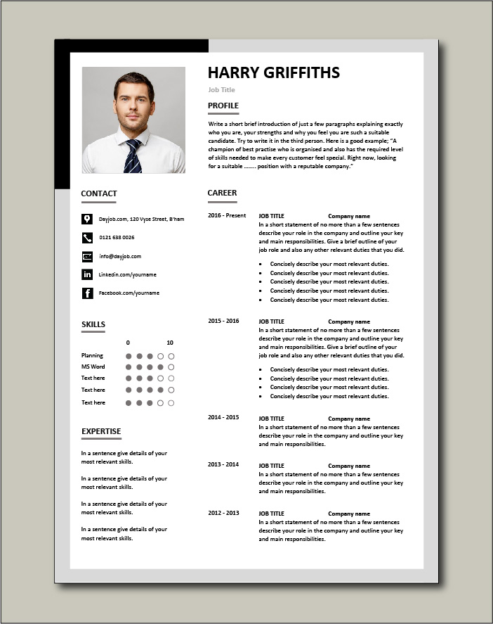 Premium CV template 31 - 2 page version