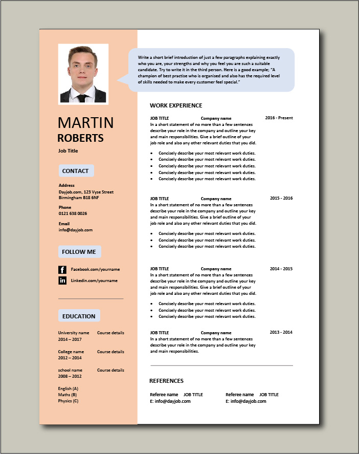 Premium CV template 33 - 1 page version