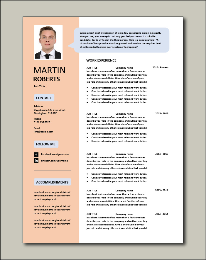 Premium CV template 33 - 2 page version