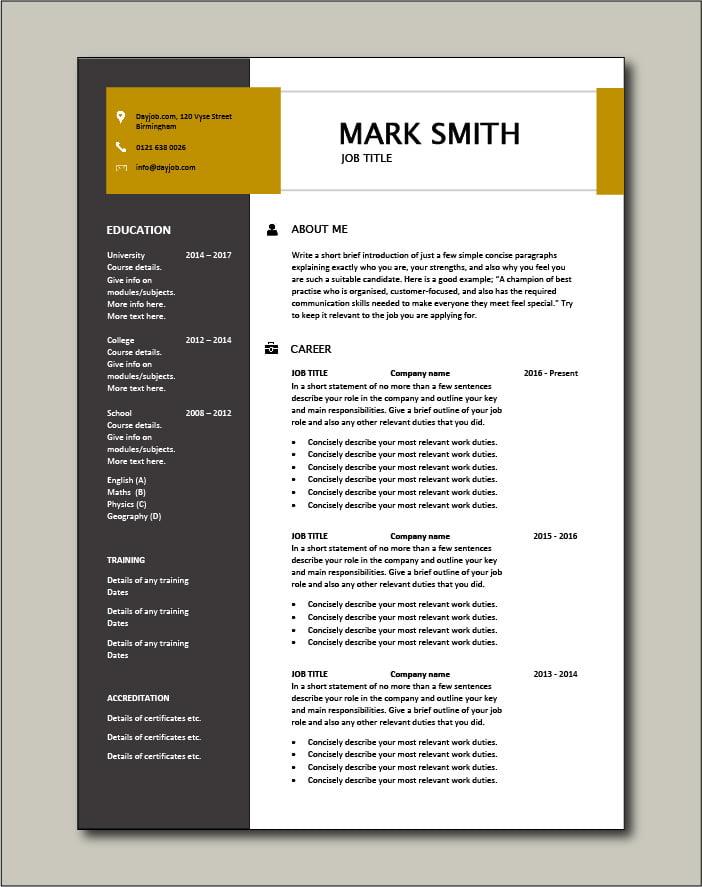 Premium CV template 37 - 2 page version