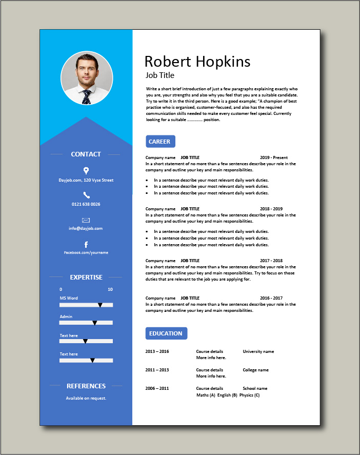 Premium CV template 40 - 1 page version
