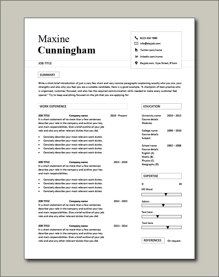 Premium CV template 41 - 1 page version