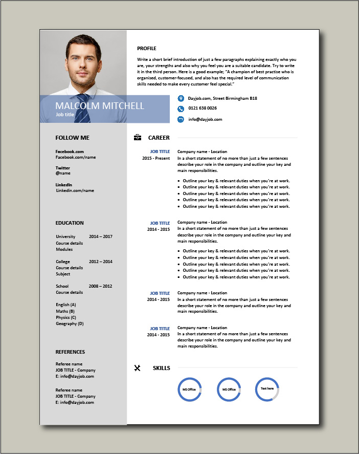 Premium CV template 43 - 1 page version