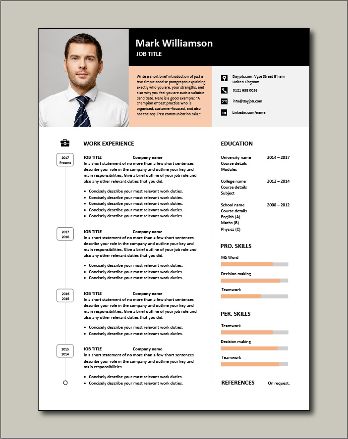 Premium CV template 46 - 1 page version