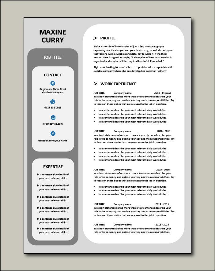 Premium CV template 49 - 2 page version