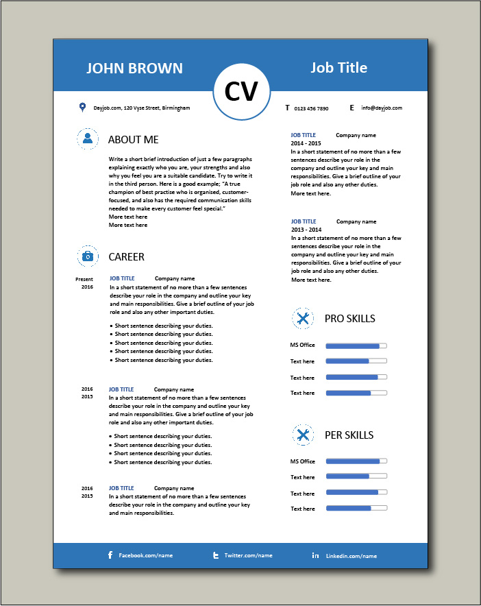 CV template 13 - 2 pages