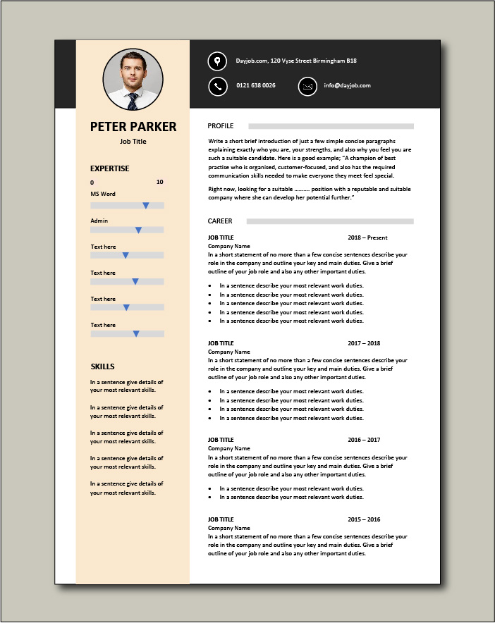 CV template 29 - 2 pages