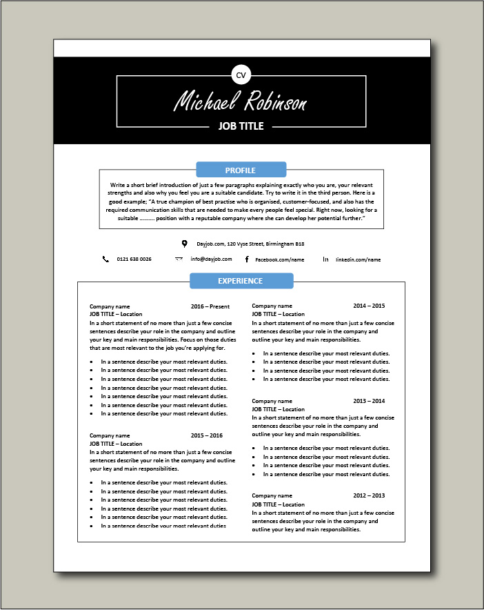 CV template 30 - 2 page