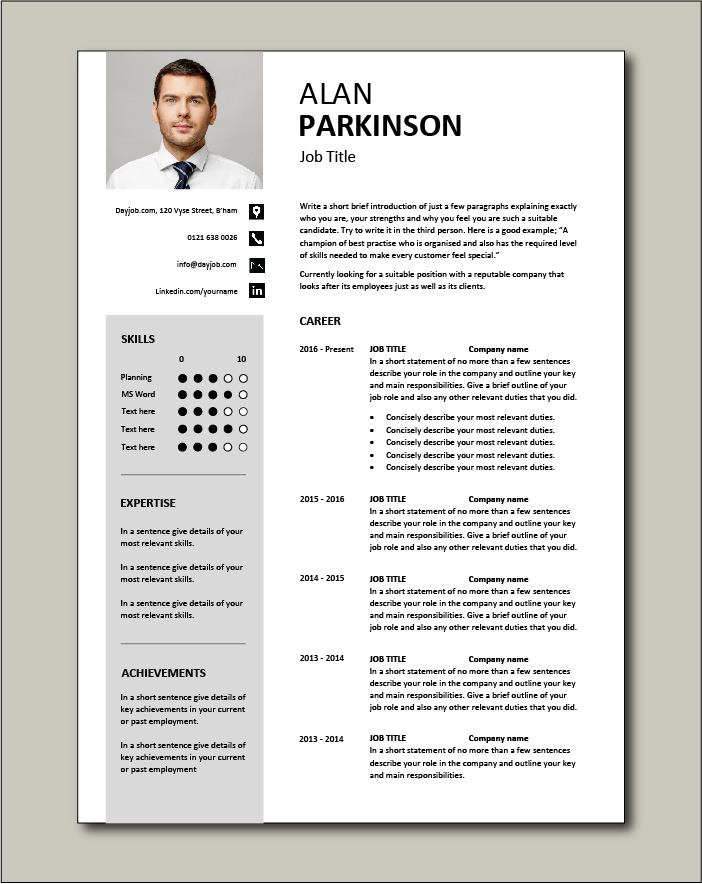 CV template 33 - 2 pages