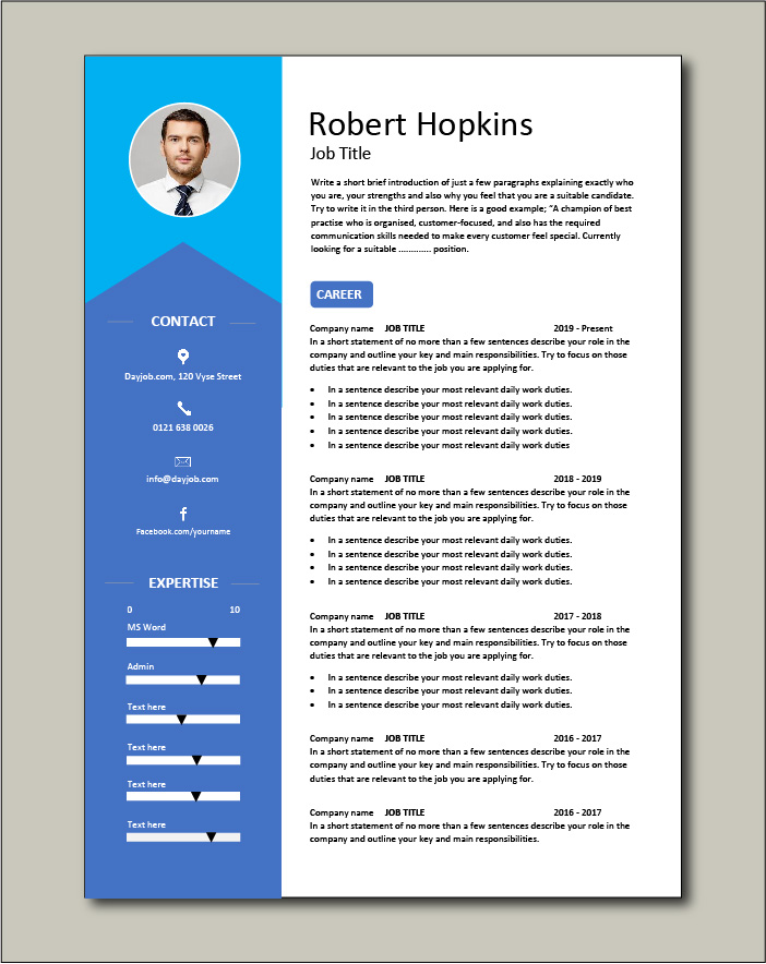CV template 37 - 2 pages