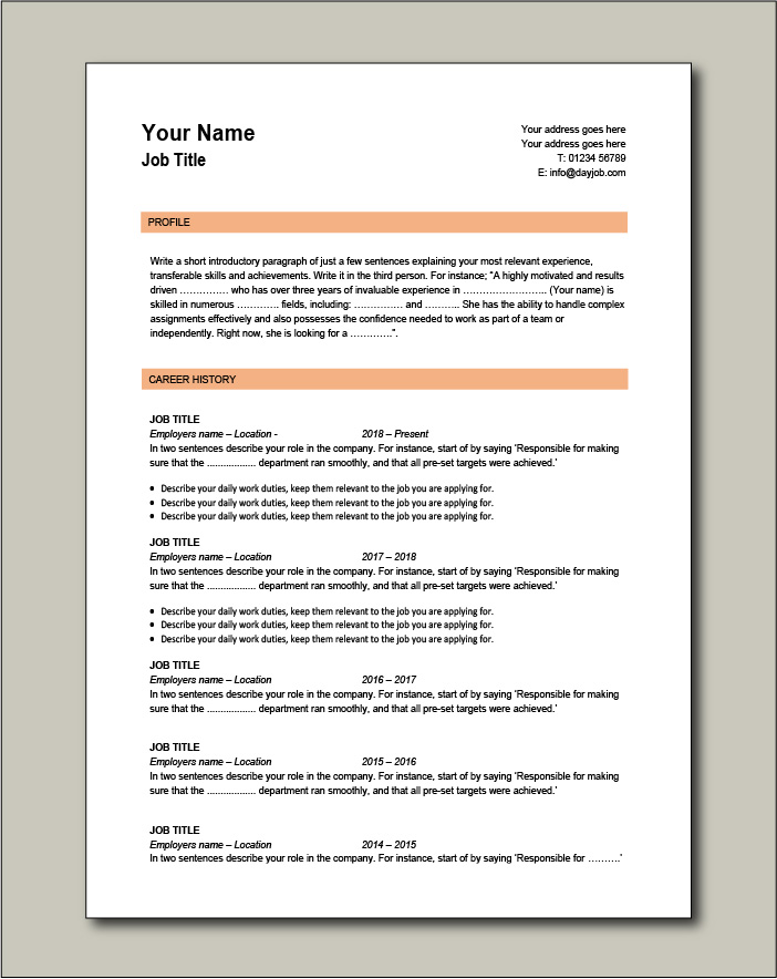 CV template 4 - 2 page