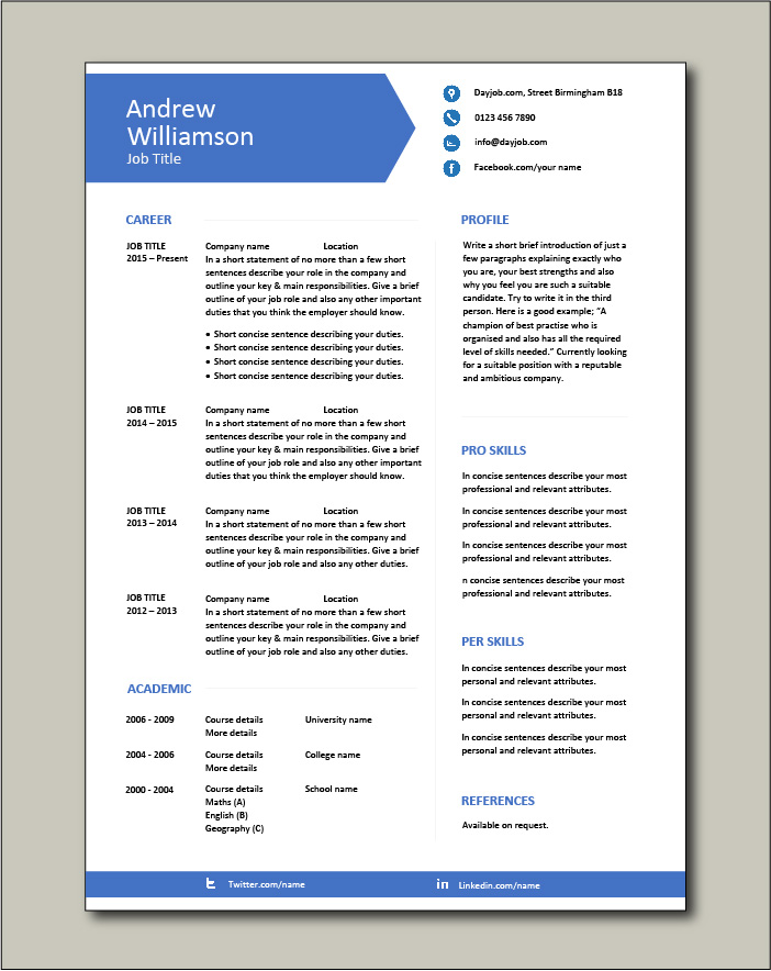 CV template 9 - 1 page