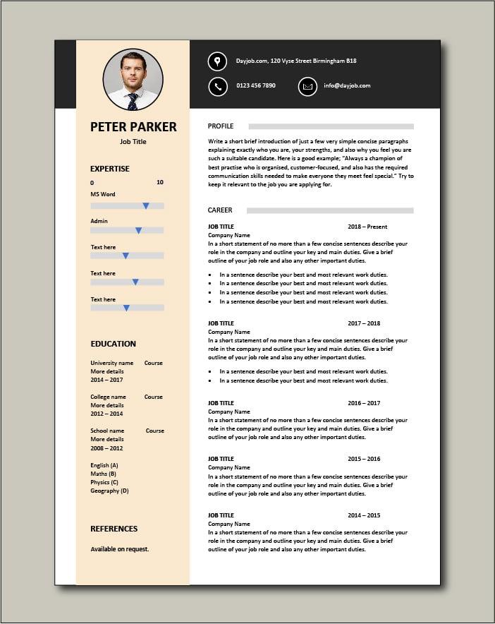 Free CV template 29