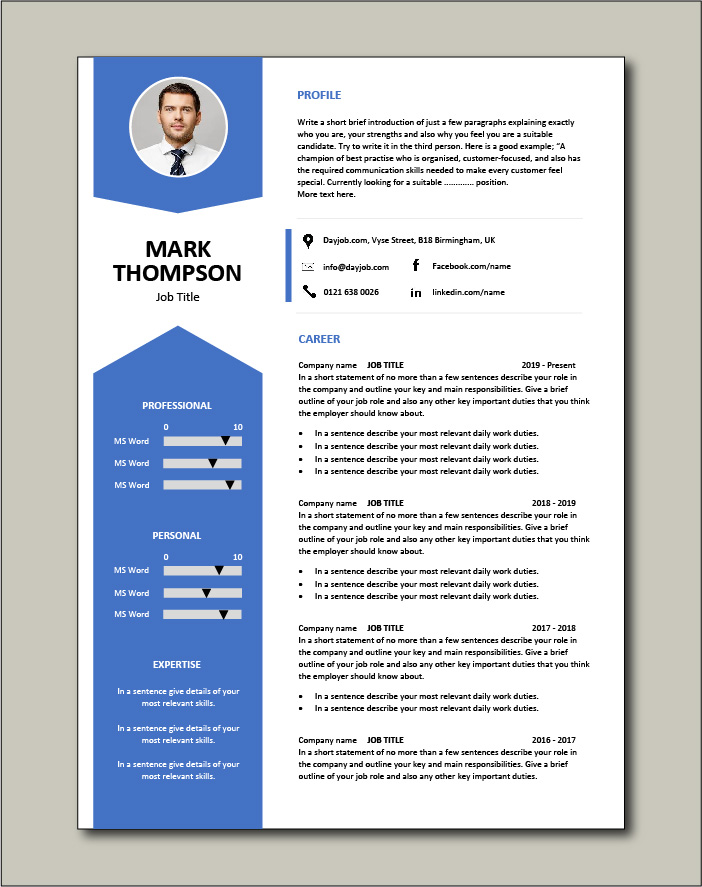 CV template 43 - 2 page