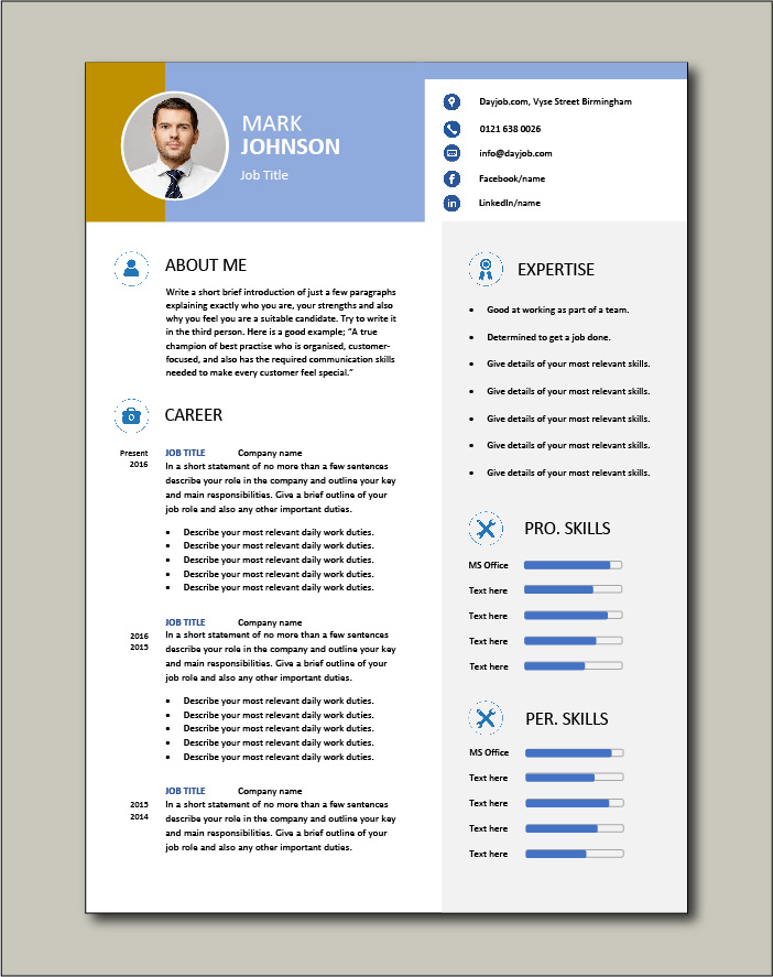 CV template 46 - 2 page