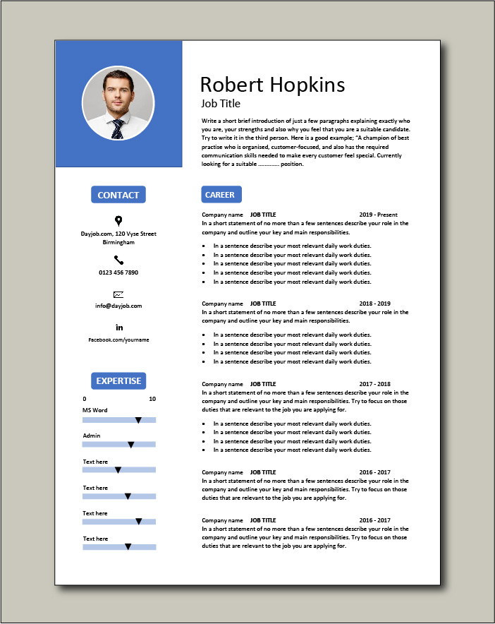CV template 53 - 2 pages