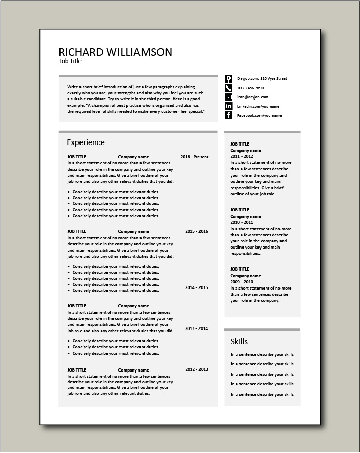 CV template 55 - 2 pages