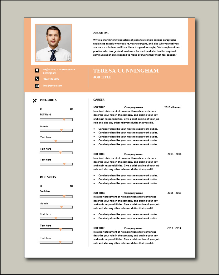 CV template 57 - 2 pages