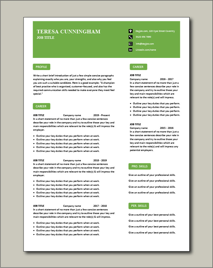 CV template 58 - 2 pages