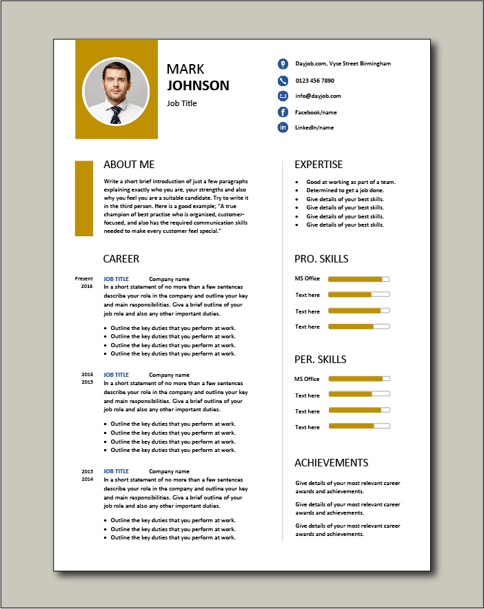CV template 61 - 2 page