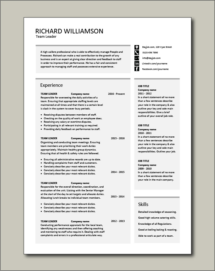 Team Leader resume template - 2 pages