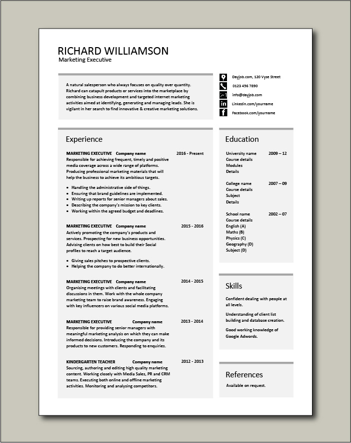 marketing executive resume  sales  example  sample