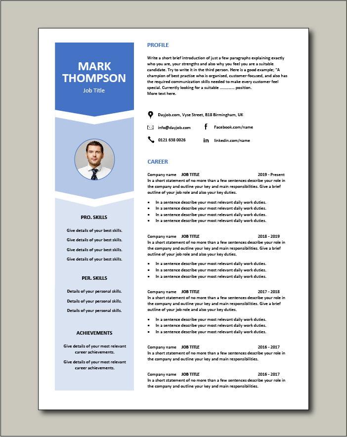 Premium CV template 55 - 2 page