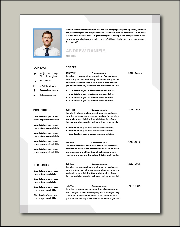 Premium CV template 63 - 2 pages