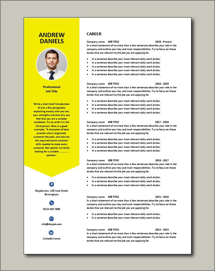 Premium CV template 64 - 2 pages