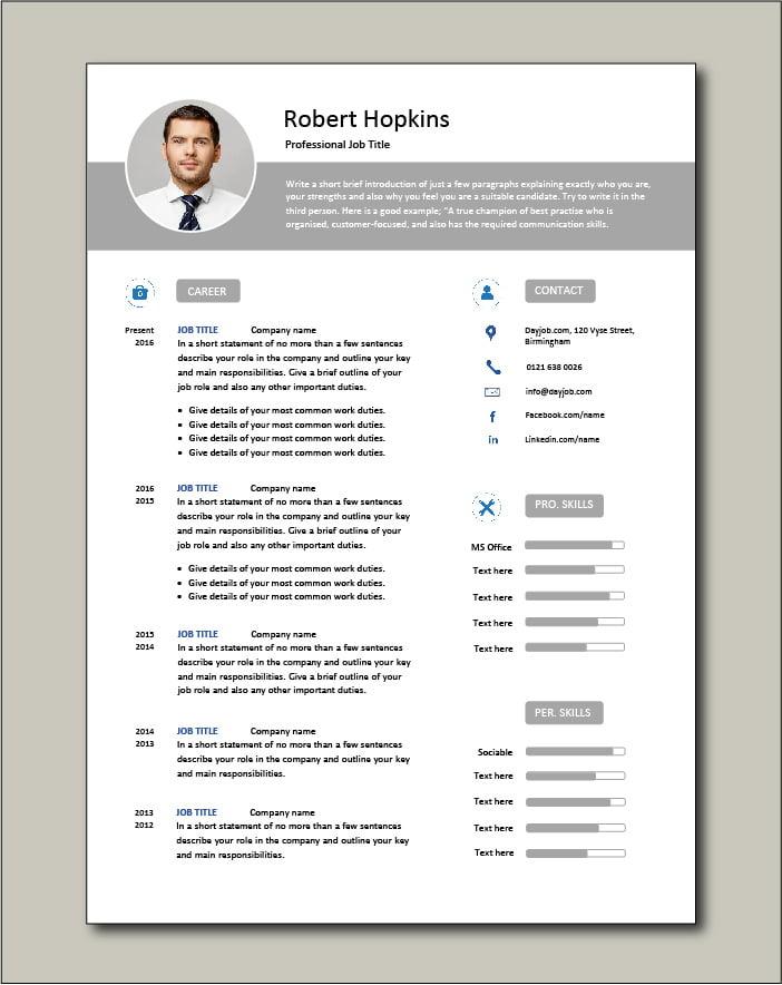 Premium CV template 65 - 2 pages