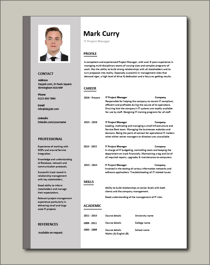 Free IT Project Manager CV template 1